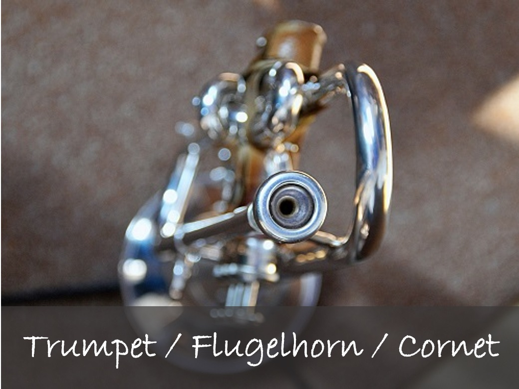 Trumpetlesson - Do you want to learn how to play the Trumpet, Flugelhorn or Cornet?